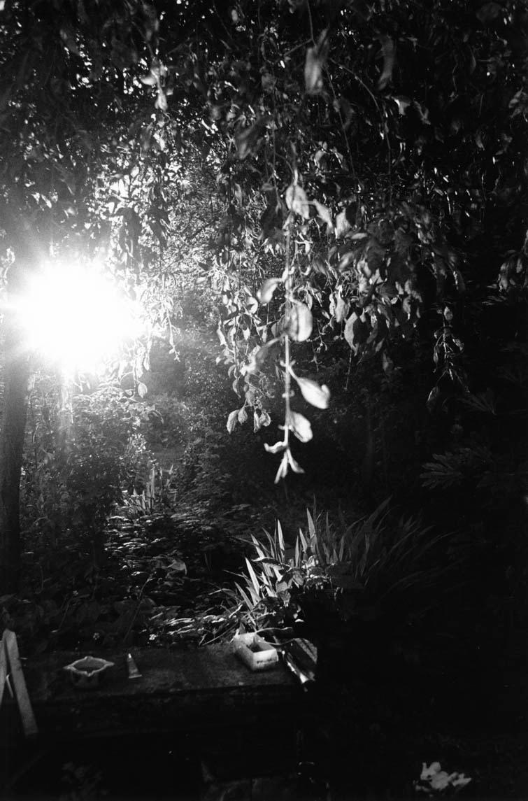 web_gardenlight