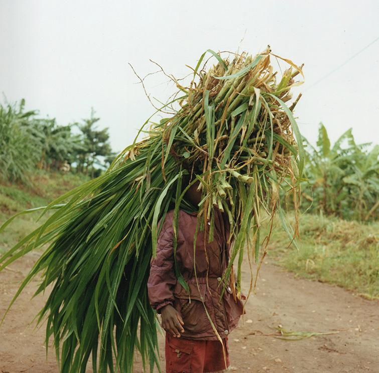 rwanda003