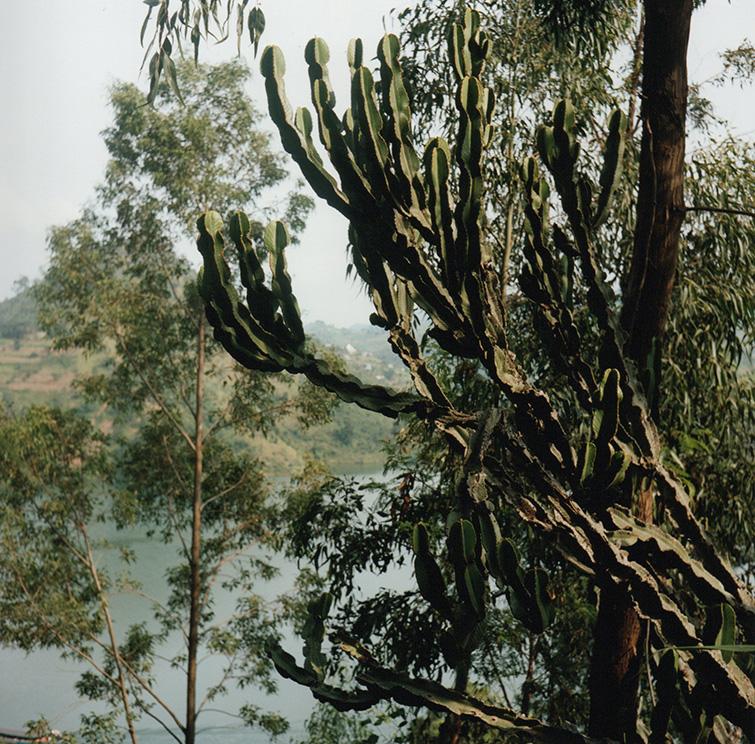 rwanda004